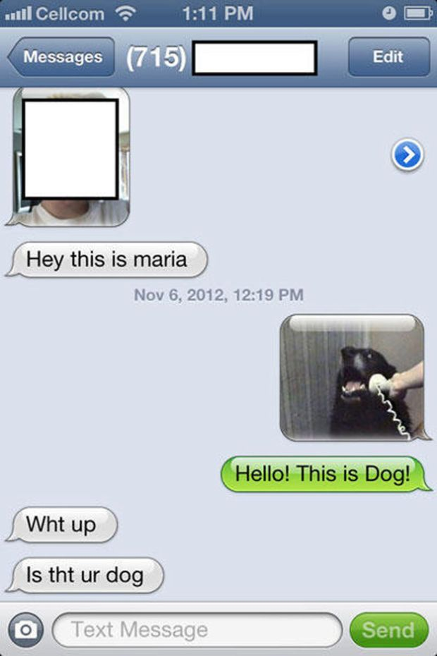 The Funniest Text Messages Ever Sent Funny Texts Texts And - Dogs able text 30 hilarious texts dogs