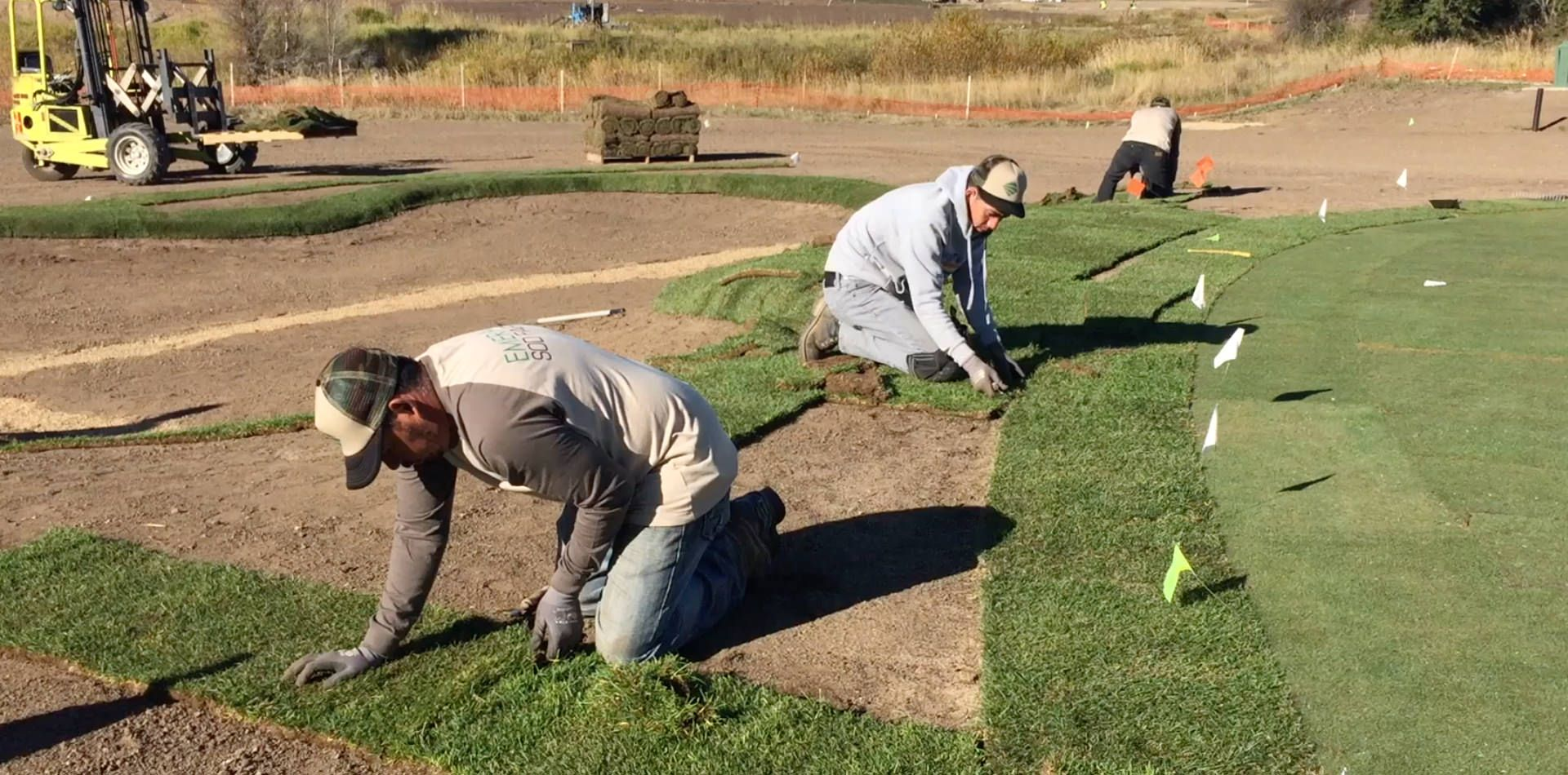 Exceptional Quality Sod Denver For Homes And Businesses Outstanding Quality Turf Grass Soddenver From Emerald Sod Farms Enables Denver B Turf Grass Farm Sod