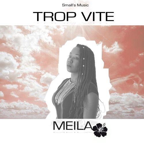 Meila - Trop vite. Composé par Titaillron et Scar Low => https://www.padezil.com/musique/2016/7/21/meila-trop-vite