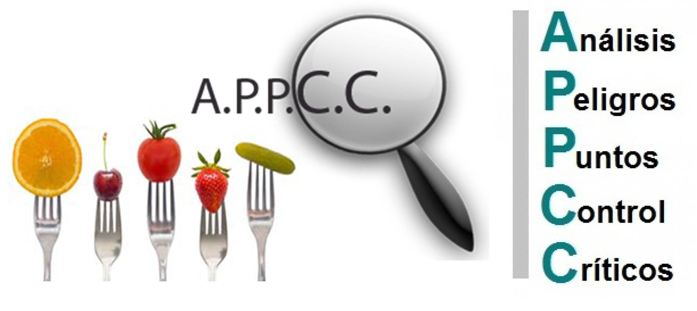 Sistema Haccp O Appcc Parte 6 Seguridad Alimentaria