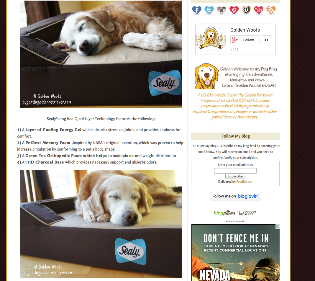 Sugar's Blog) Please check it out!) Sealy Dog Bed Ads