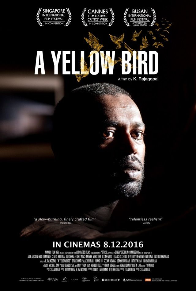 A Yellow Bird 2016 Review With Images Yellow Bird Cinema