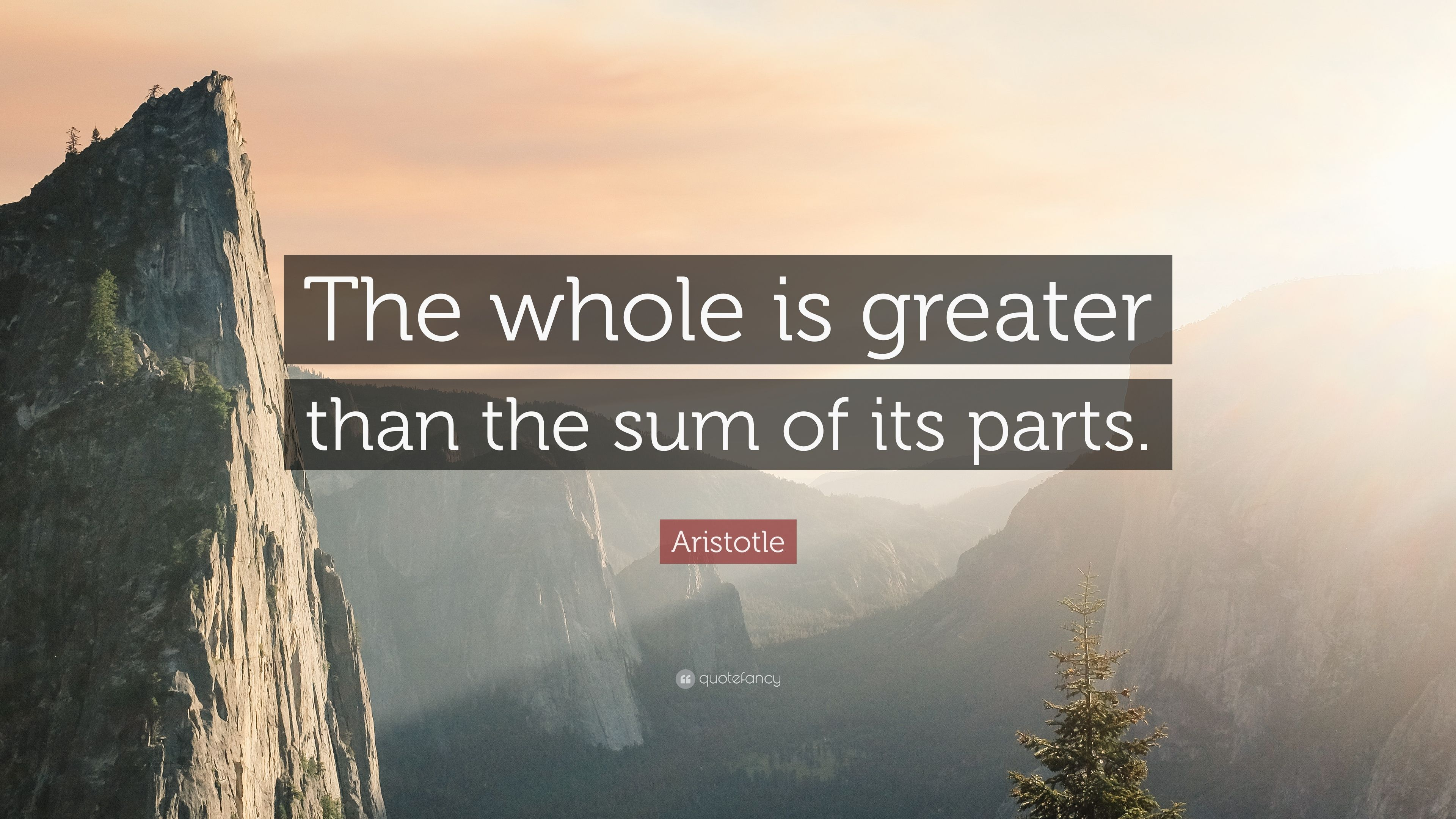 Image Result For The Whole Is Greater Than The Sum Of Its Parts