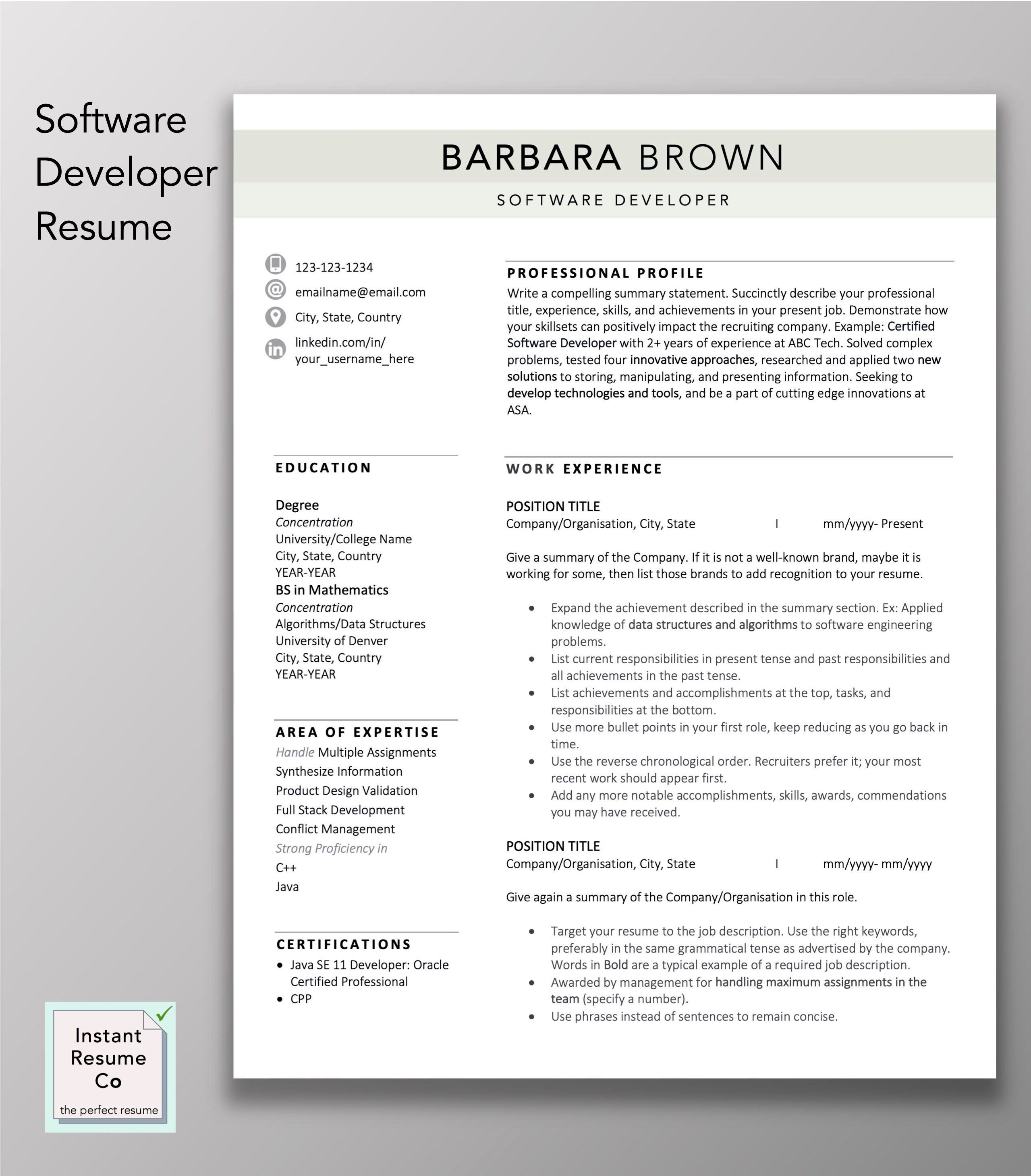 Software Developer Resume 2 Page Professional Resume Cv Etsy Resume Cv Template Word Software Development