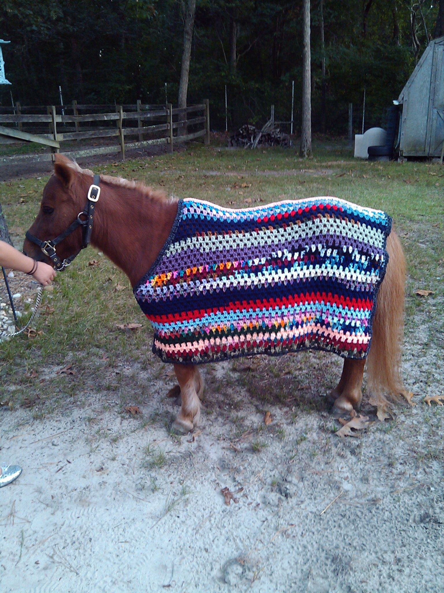 Crocheted Miniature Horse Cooler