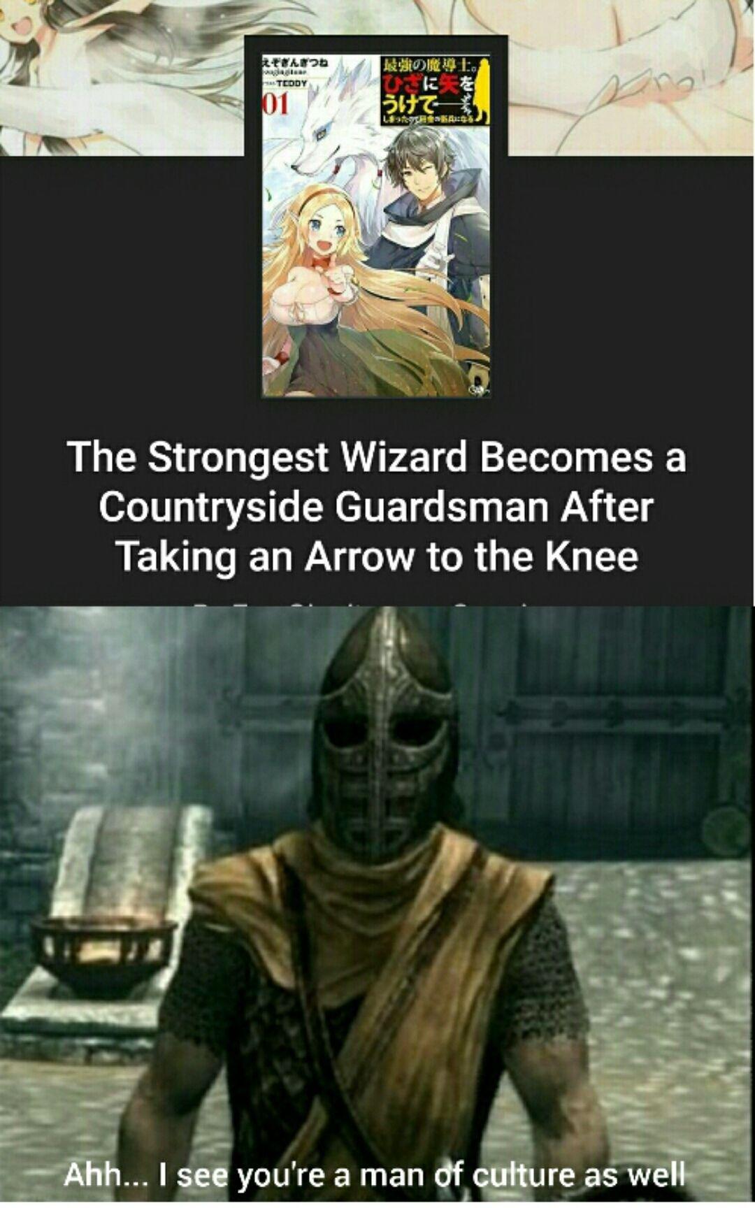 No Thing S Better Than A Skyrim Meme Skyrim Memes Stupid Memes