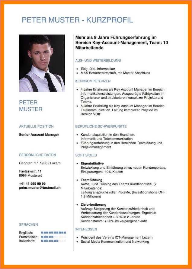 Lebenslauf Berufserfahrener Venture Capital Associate 10