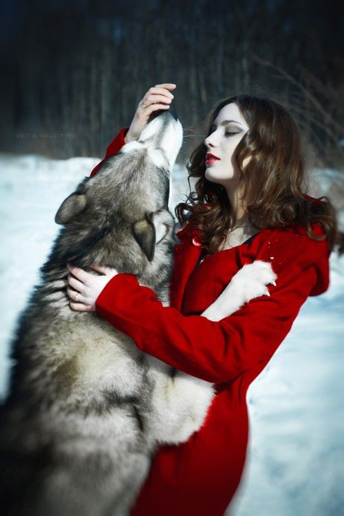 Red And Wolf With Images Red Riding Hood