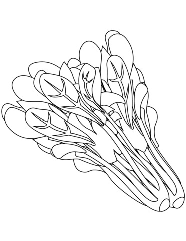 Spinach Coloring page printables