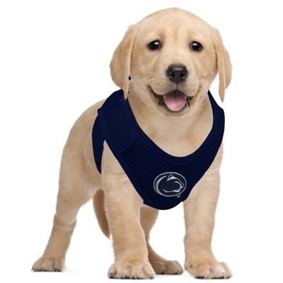 PENN STATE – SWAG – Penn State Nittany Lions Pet Vest Harness 838250e0a