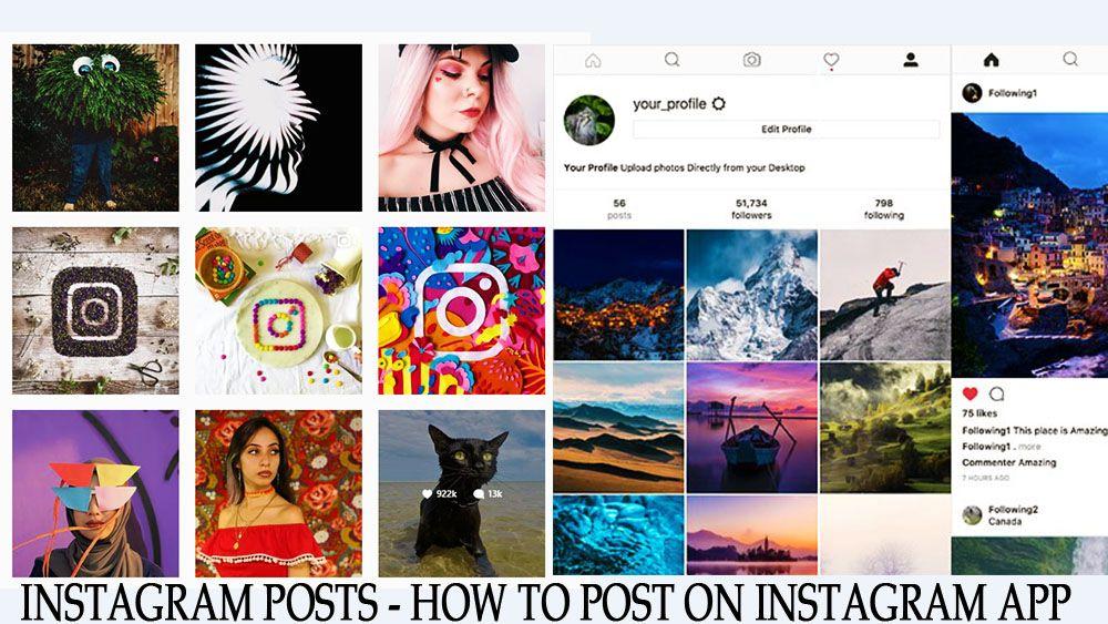 How to write your Instagram Bio like a pro Instagram bio