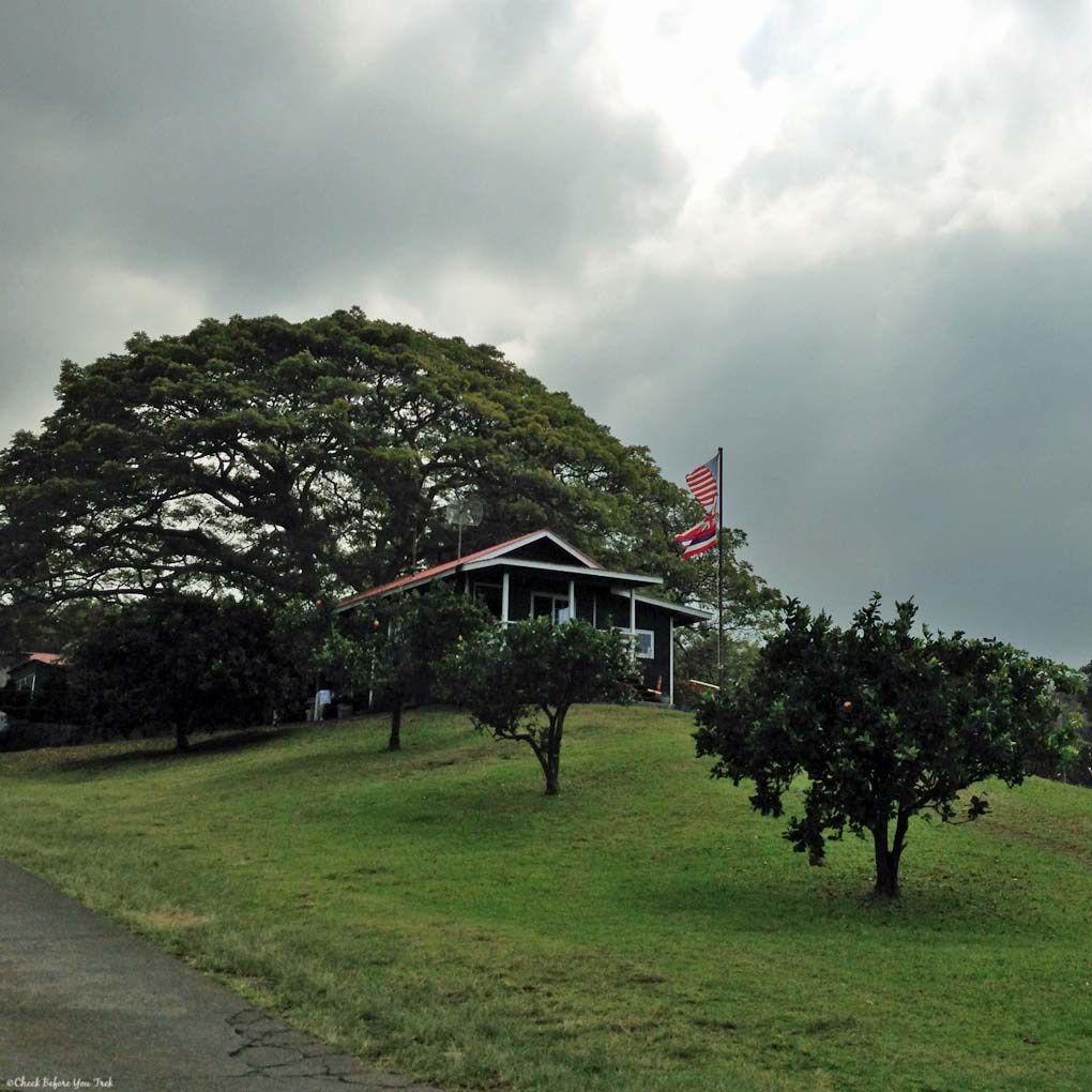 mountain thunder coffee plantation tour