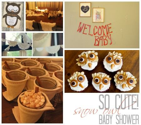 Winter Wonderland The Most Adorable Diy Snow Owl Themed Baby Shower