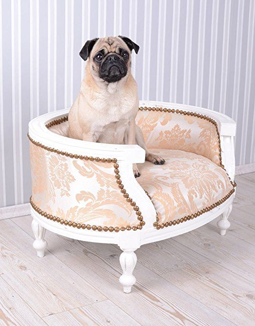 Dog Bed Baroque Dog Sofa Cream Bed For Mops Amp Bully Amazon Co Uk Pet Supplies Dog Bed Dog Sofa Dog Pet Beds