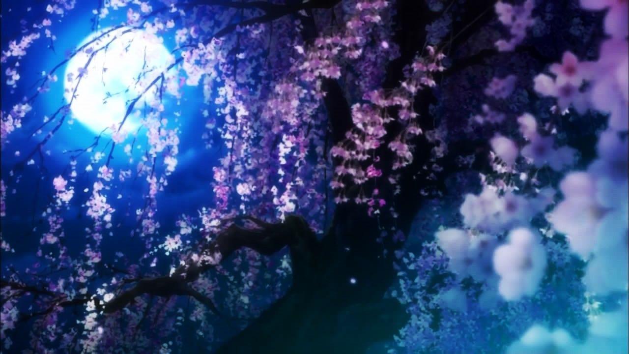 いとはかなし Itohakanashi 夏目友人帳 Natsume Yuujinchou 夜桜 Yozakura 1280x7 桜 デザイン イラスト 幻想的なイラスト 綺麗なイラスト壁紙背景