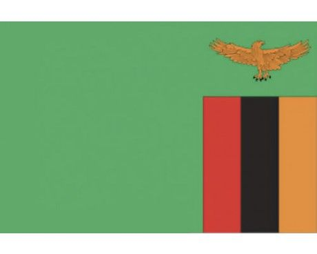 Zambia Flag | Zambia flag, Flags of the world, Flag