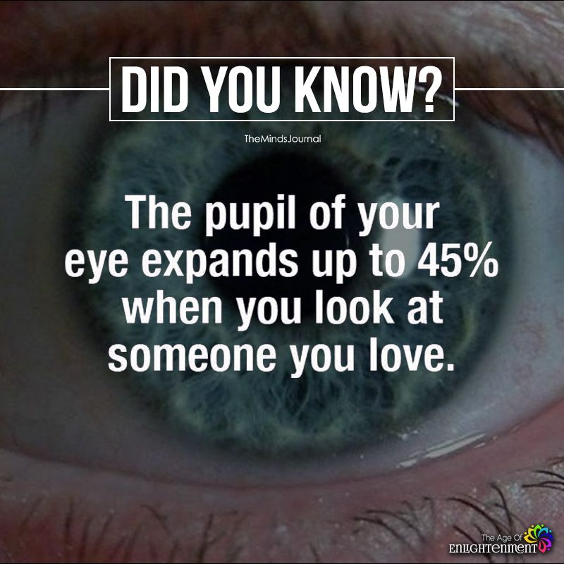 The Pupil Of Your Eye