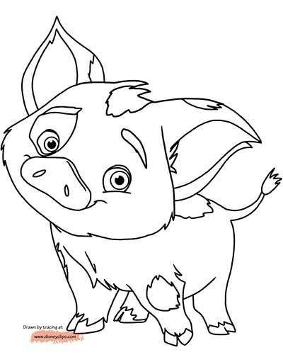 Pua Pig Coloring Pages From Moana