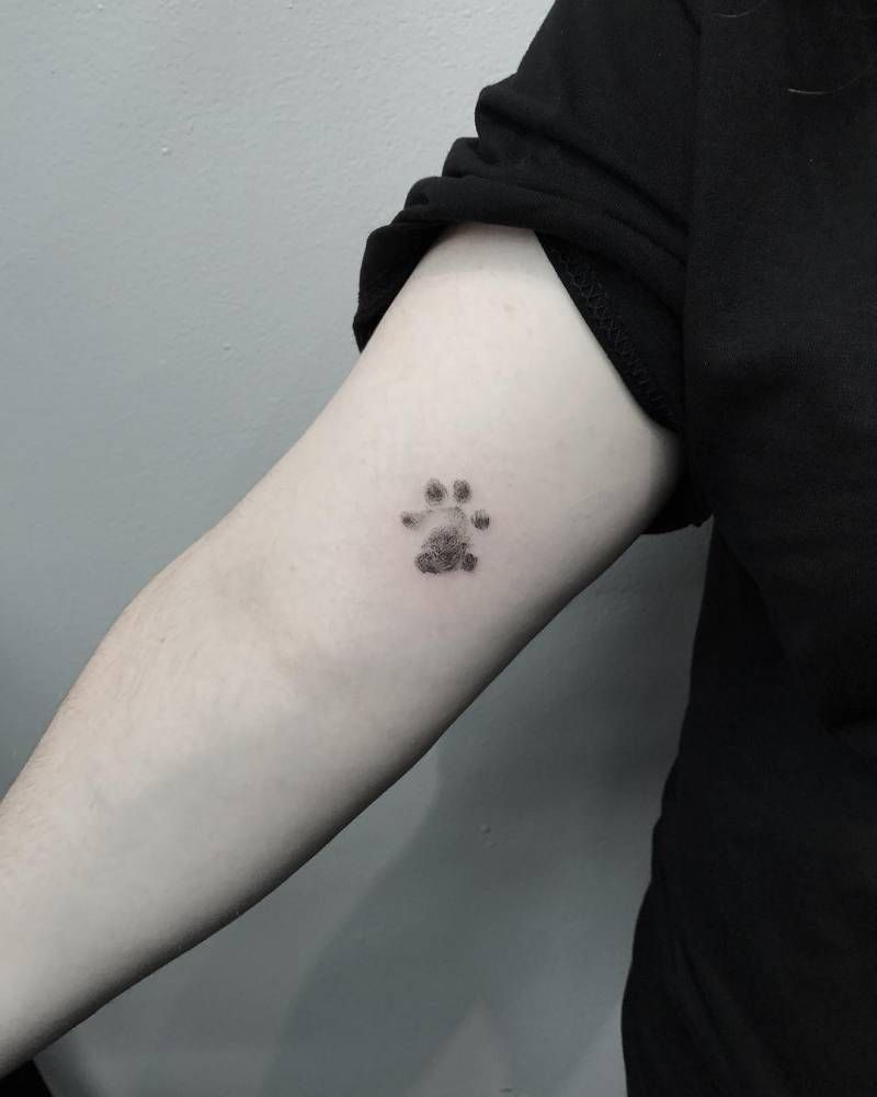b8275dc630d10 Paw tattoo on the right inner arm. | Animal Tattoos | Small animal ...