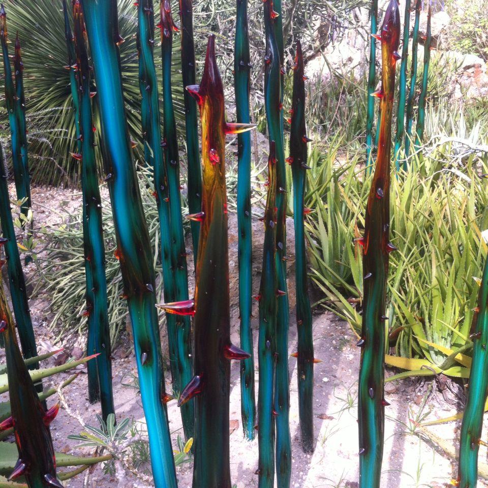 Glass cactus Glass cactus, Hair wrap, Hair styles