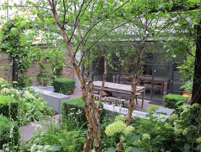 Pin By Ilze Rumba On Trees Small Urban Garden Small Garden Design Garden On A Hill