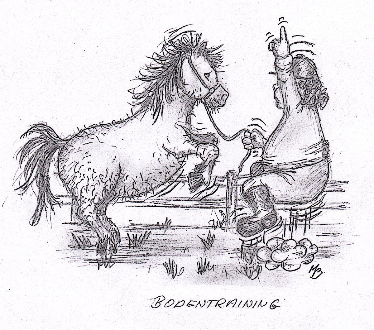 Image result for comic pferd longieren  Comic pferd, Ausmalen, Pferd