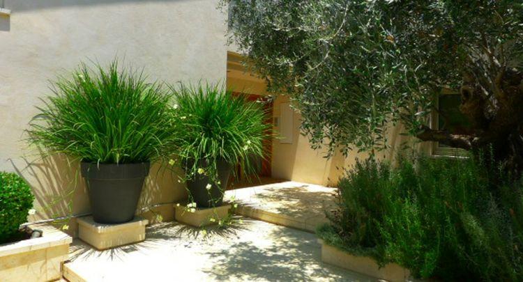 Decoraci n con macetas grandes plantas ideas para for Decoracion jardin macetas