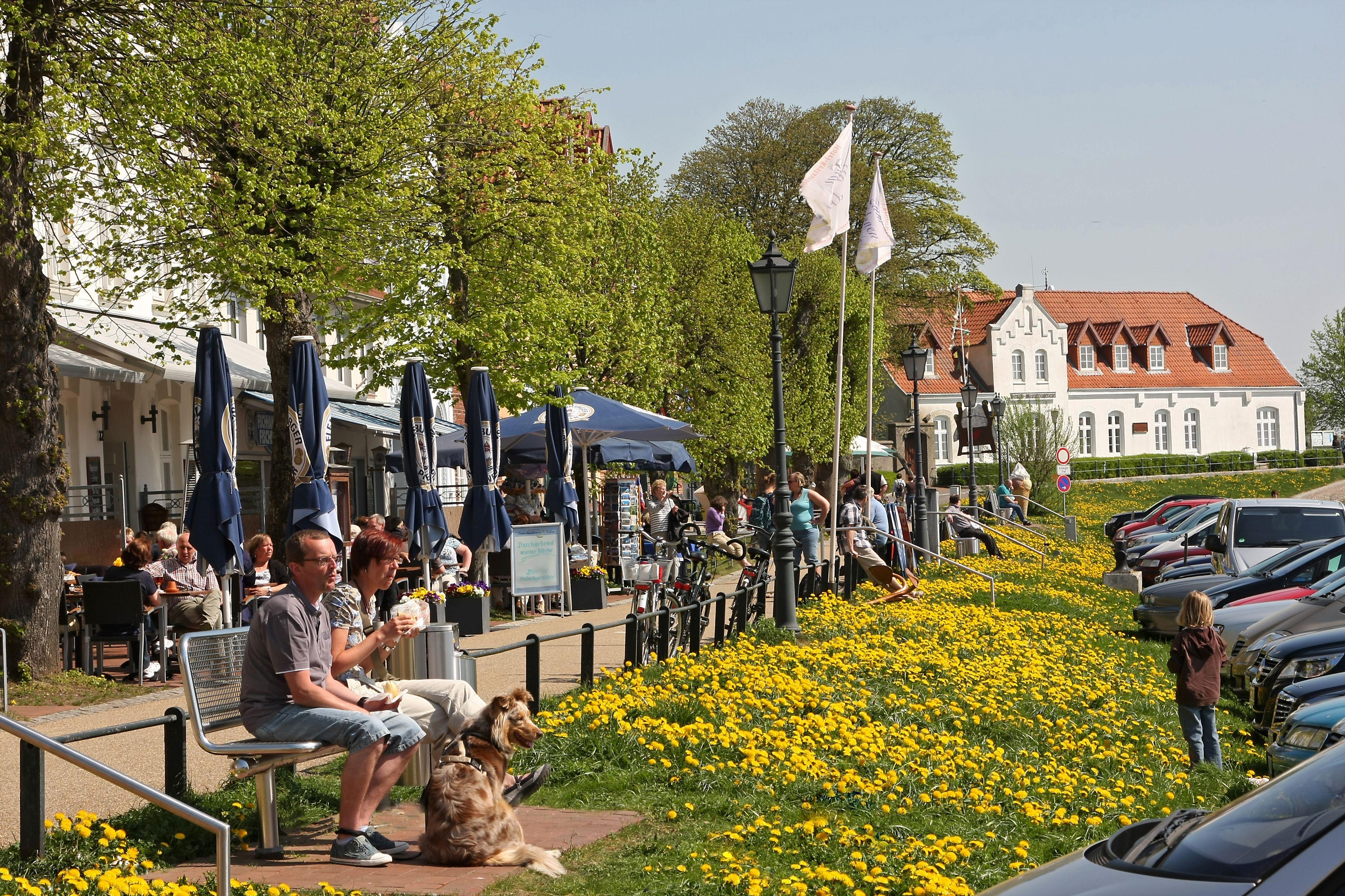 Entspannen an der Hafen Promenande in Tönning. Mehr auf www.toenning.de