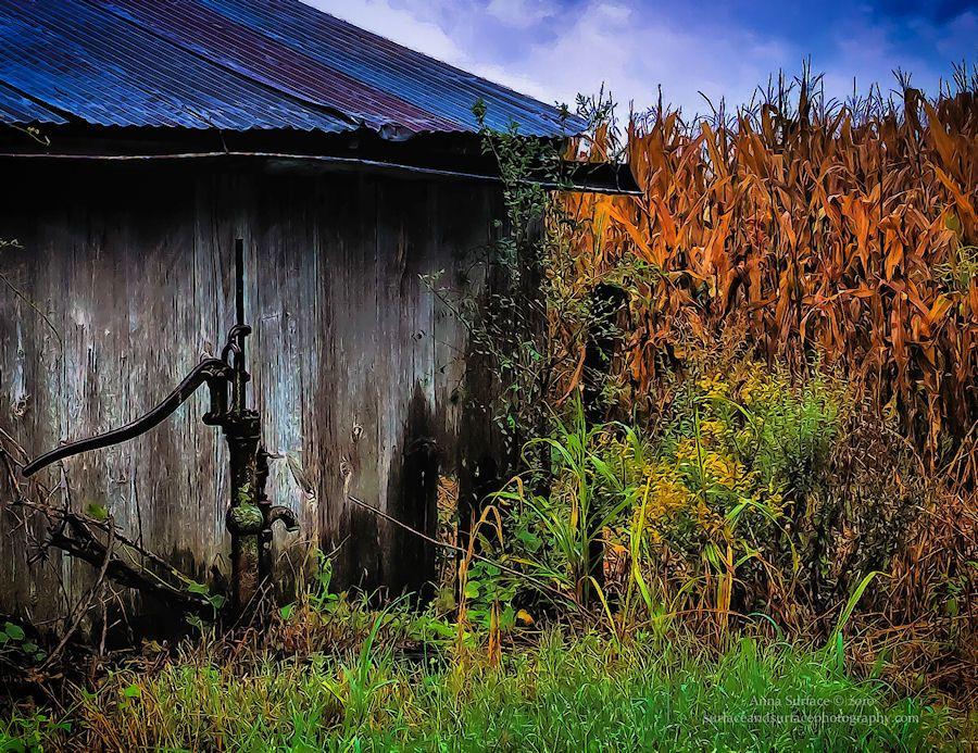 old barn....hand pump.....corn field