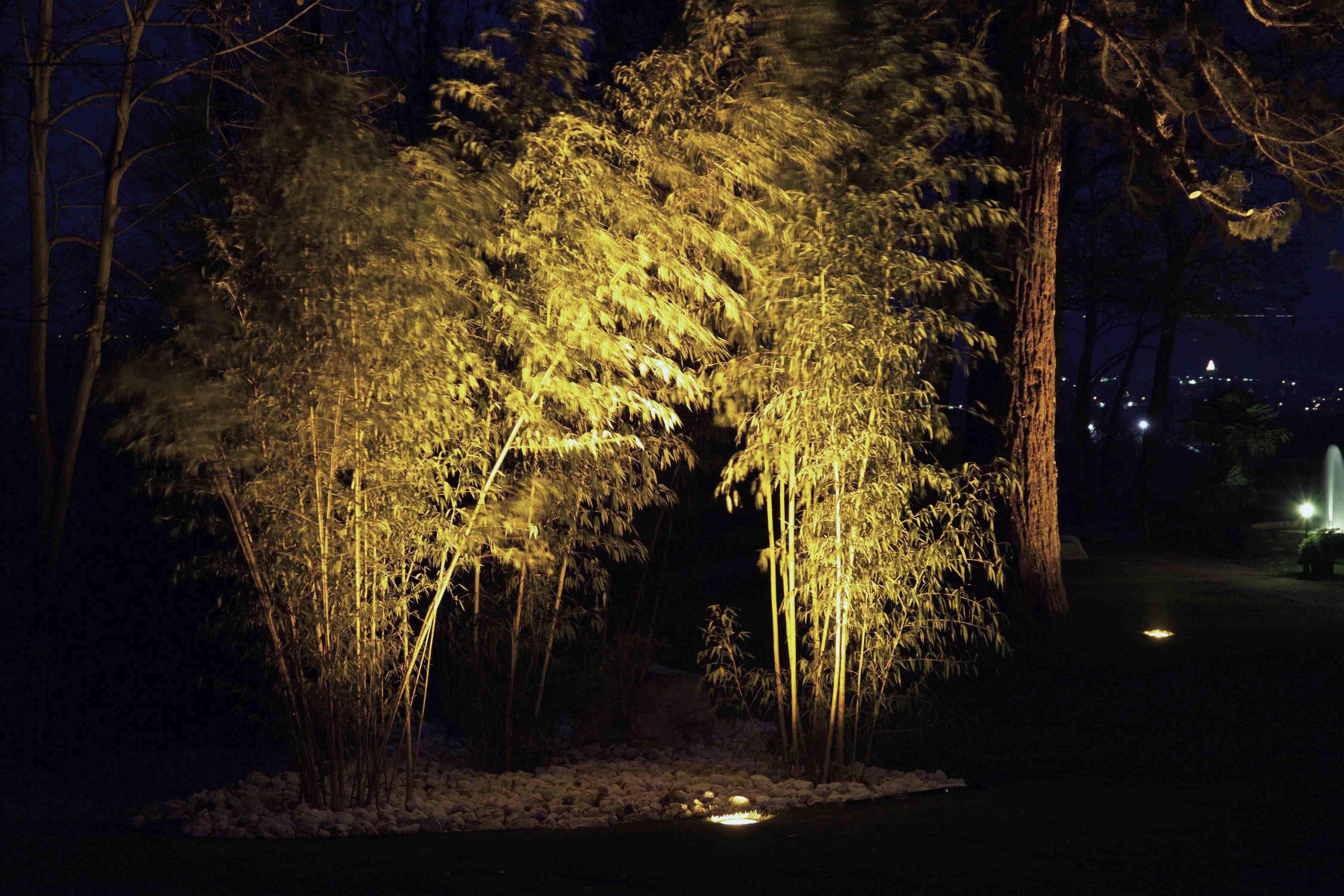 Effektbeleuchtung Aus Dem Boden Mit Bodenstrahler Albert Leuchten Gartenbeleuchtung Beleuchten