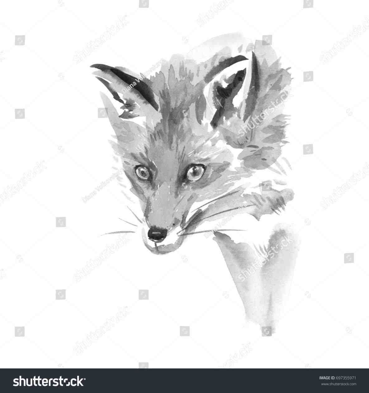 Art Gallery Paintings Black And White   Fox painting ...