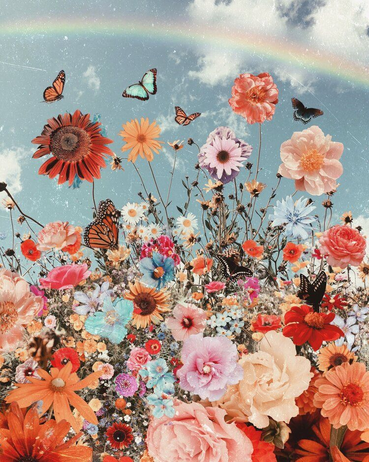 Autumn Hues A Map Of Dreams Butterfly Wallpaper Iphone Butterfly Wallpaper Flower Wallpaper