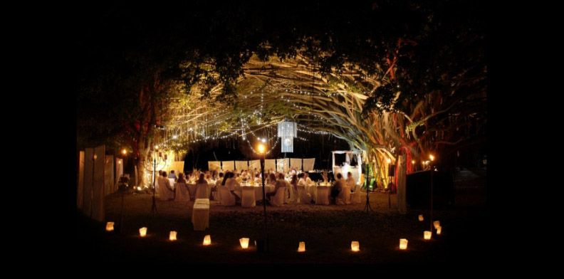 Port Douglas Receptions Under The Fig Tree Wedding Lounge