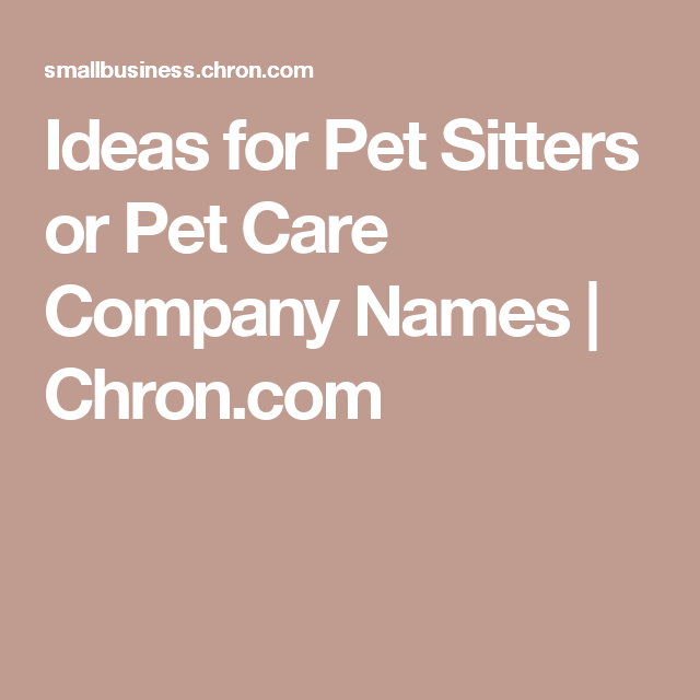 Ideas for Pet Sitters or Pet Care Company Names | Pets and