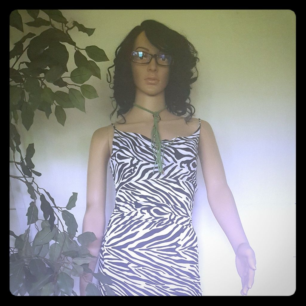 Bebe Zebra Print Dress-Must Bundle