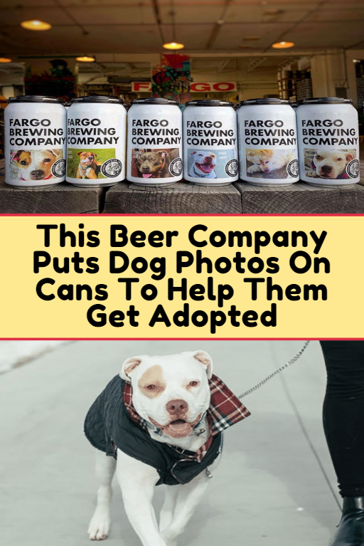 This Beer Company Puts Dog Photos On Cans To Help Them Get