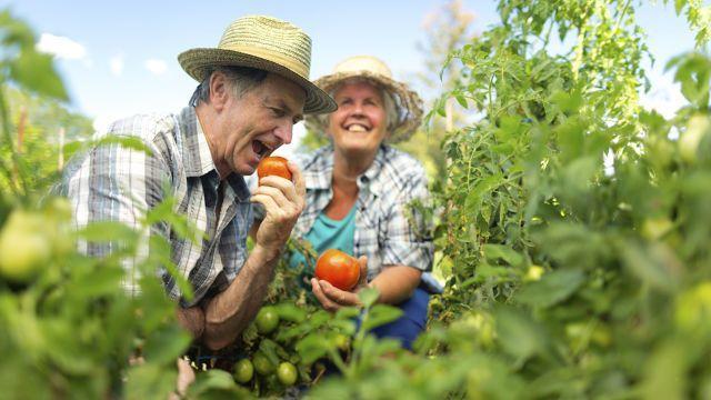 Los buenos hábitos de salud oral puede reducir el riesgo de desarrollar demencia