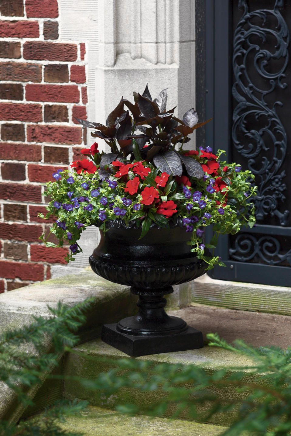 Tropical Treasures Planter For A Full Shade Area