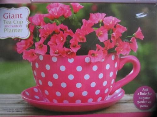 Giant Pink White Polka Dot Tea Cup Saucer Flower Plant Pot Planter