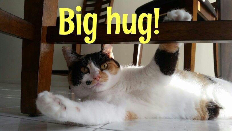 Hug me baby!