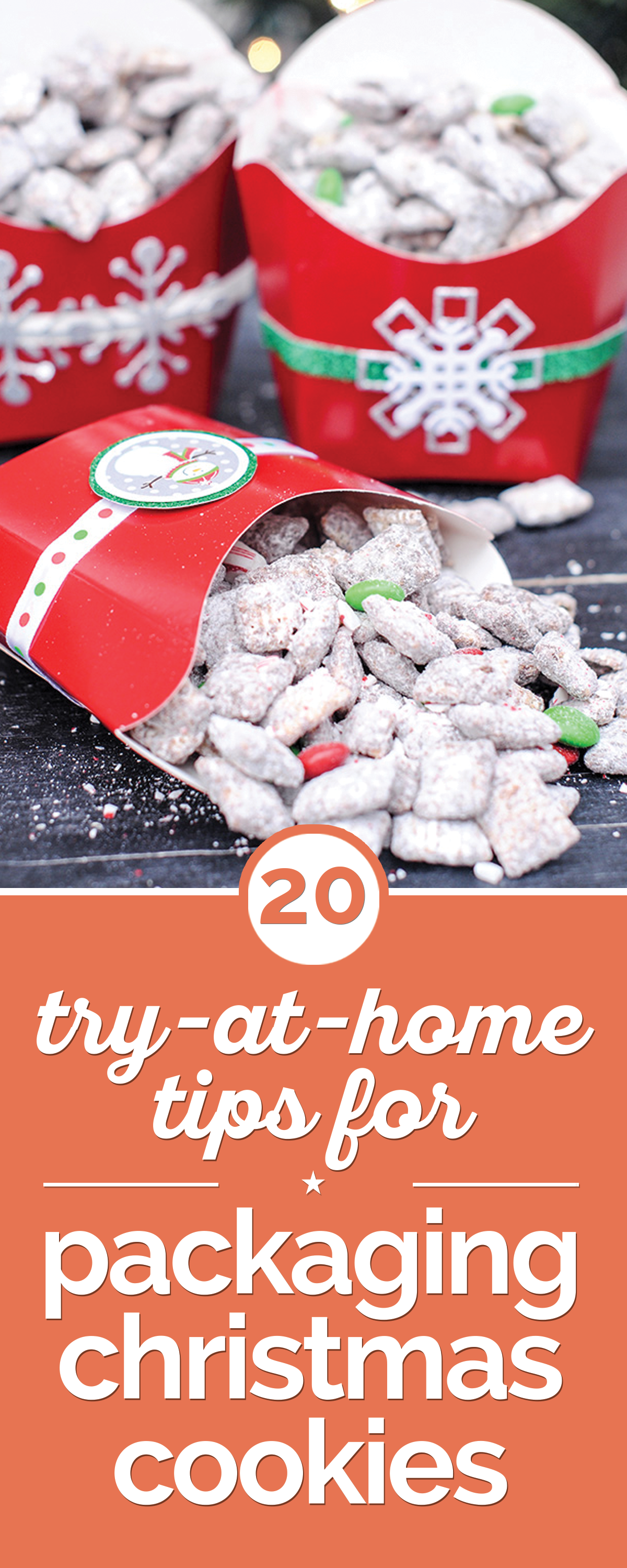 20 Cute Ideas for Packaging Christmas Cookies | Christmas ...