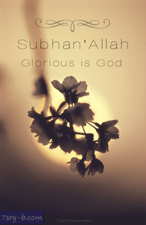 صور إسلامية بالإنجليزي صور دينية مكتوب عليها بالإنجليزي Allah Islam Allah Islam