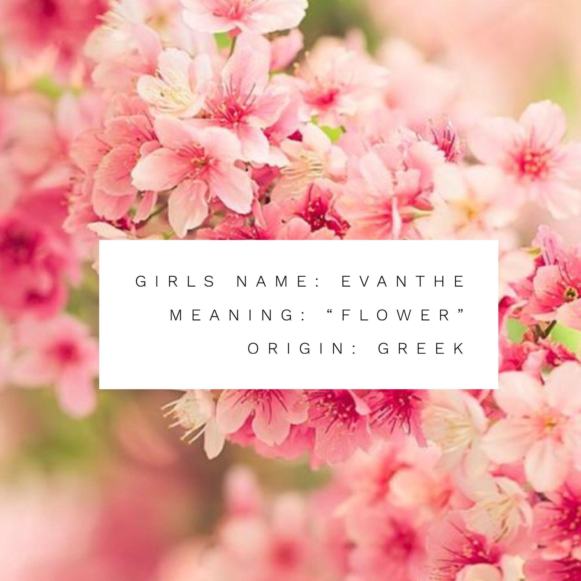 "Girls Name Evanthe Name Meaning ""flower"" Name Origin"