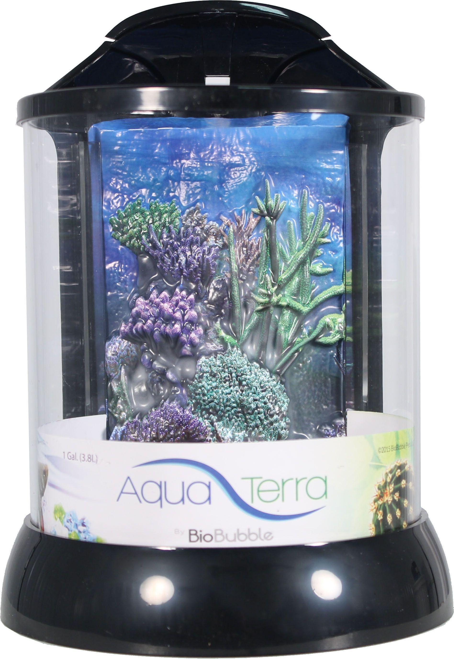 d1724f3738df97d35368d29b3edacae9 Frais De Aquarium Tropical Schème