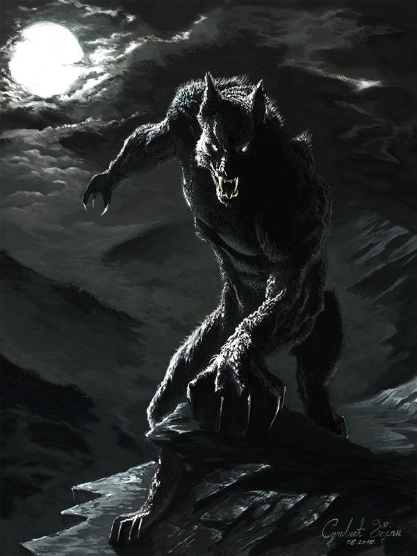 Kartinki Po Zaprosu Klan Sekilleri Obraz Volk Werewolf Art Werewolf Tattoo Werewolf