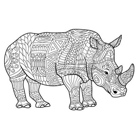 Stock Vector Coloring Books Rhinoceros Animal Drawings