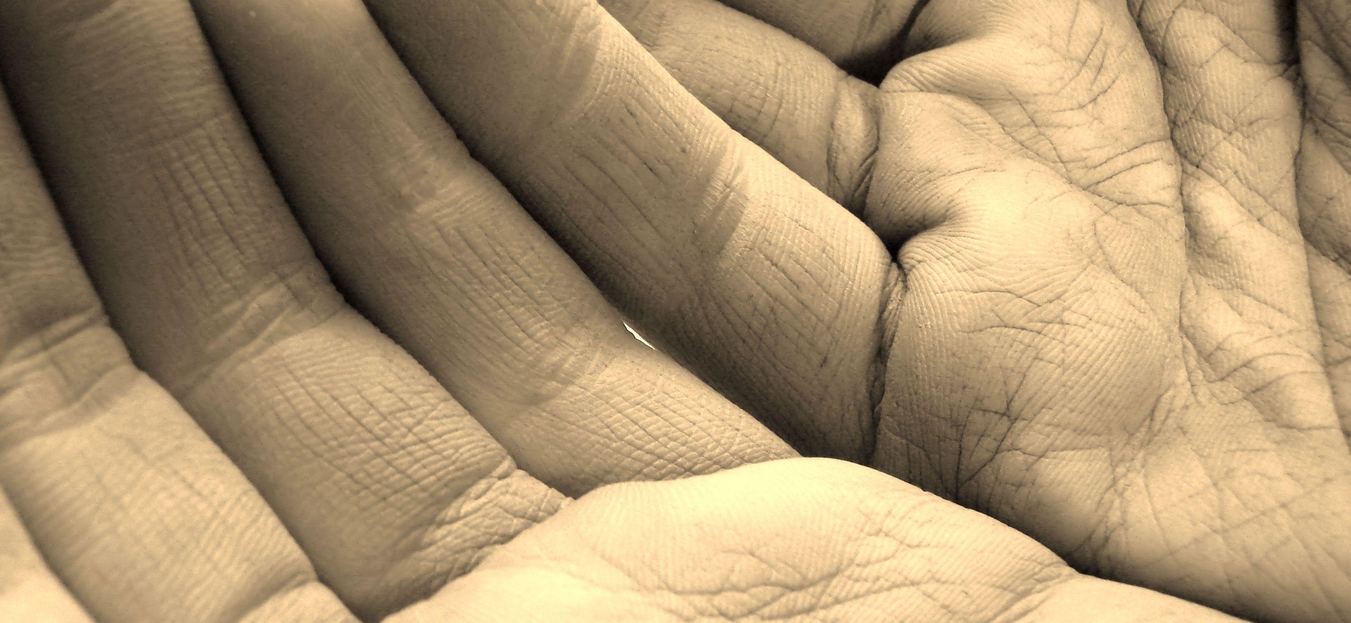 La 'piel sensible' no es una dolencia diagnosticable médicamente o, al menos, no suele serlo. Muchas personas, mujeres mayoritariamente, refieren irritaciones, picores y molestias y, otras muchas, por haberse acostumbrado, pasan a considerarlo algo normal. En este post, vamos a identificar algunas de esas desagradables sensaciones y reacciones dermatológicas que nos hacen hablar, como ya hemos dicho, de 'pieles sensibles'.