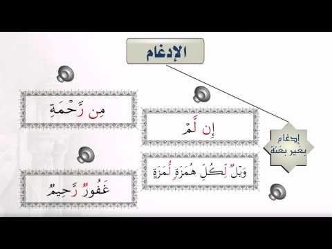 أحكام النون الساكنة والتنوين 2ـ الإدغام خلونا معاه Learn Quran Youtube Learning