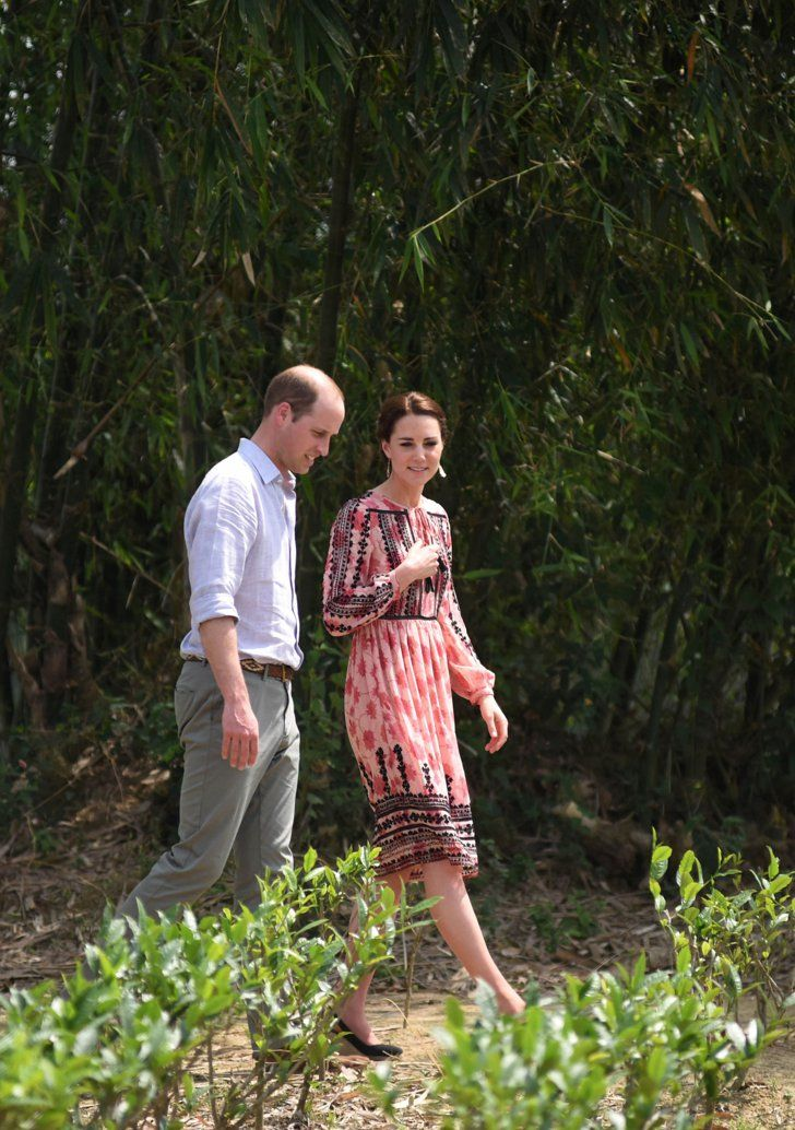 Pin for Later: The Duchess of Cambridge Fed a Baby Elephant in a Topshop Dress —What Did You Do Today?