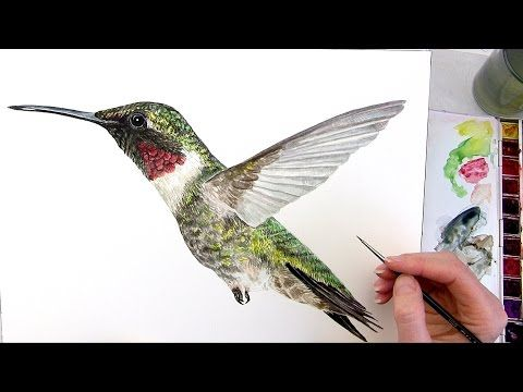 How to paint shiny coloured feathers in watercolor - YouTube